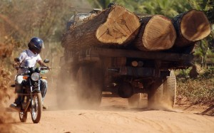 logging-truck-bike_2246385k