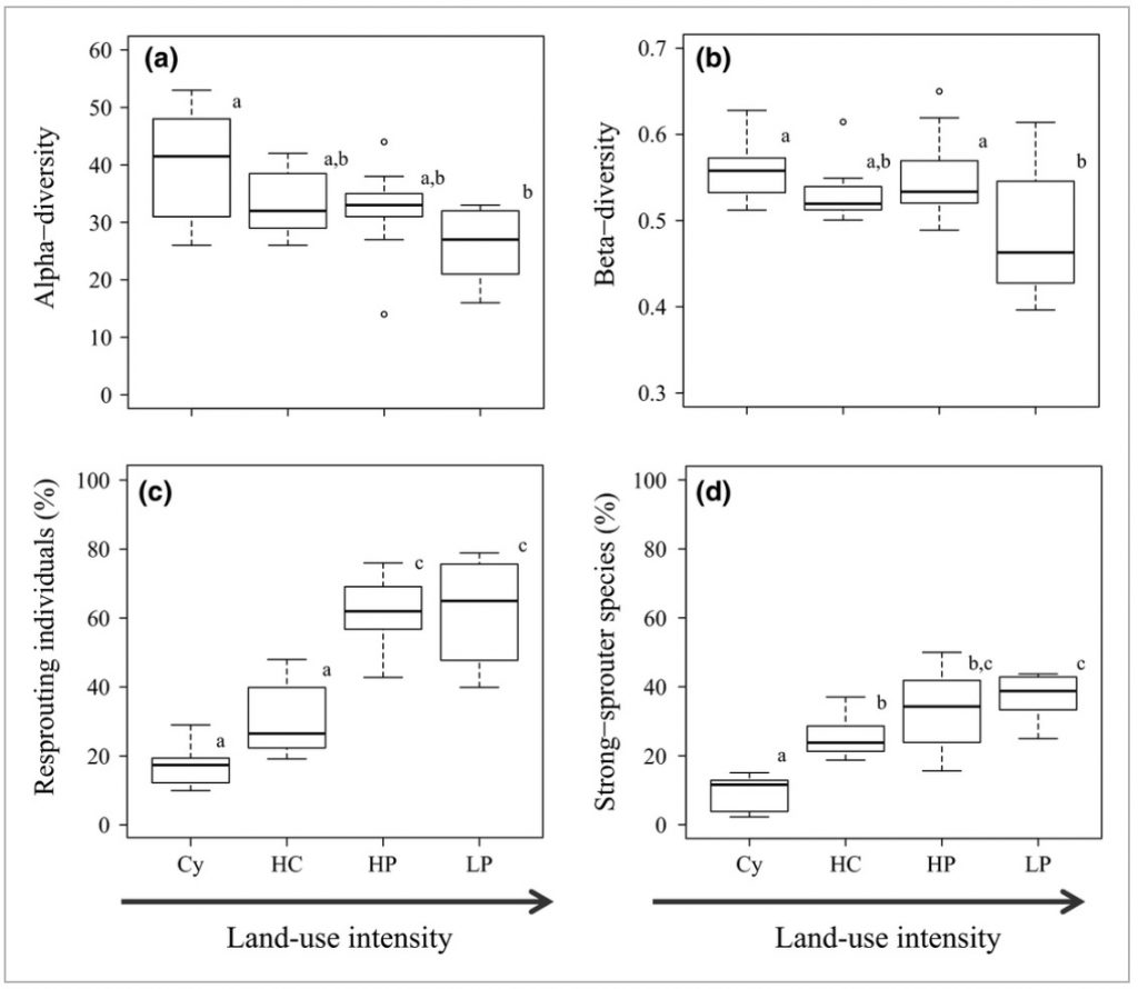 Figure 3. Changes in community diversity and regeneration strategies with previous land-use intensity. Comparisons across MRT groups on (a) α-diversity calculated as number of species within 500 m2, (b) β-diversity, (c) percentage resprouting genets and (d) percentage strong sprouter species, for each group formed by the multivariate regression tree. Cy (one cycle), HC (high clay content), HP (high P content), LP (low P content). Boxes represent lower and upper quartile, horizontal line represents the median, and whiskers extend to the lowest and highest datum within 1.5 interquantile range. Significant differences among groups are indicated with different letters.